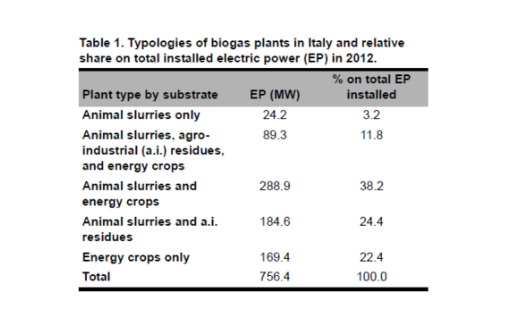 How Distorting Policies Can Affect Energy Efficiency and Sustainability: The Case of Biogas Production in the Po Valley (Italy)