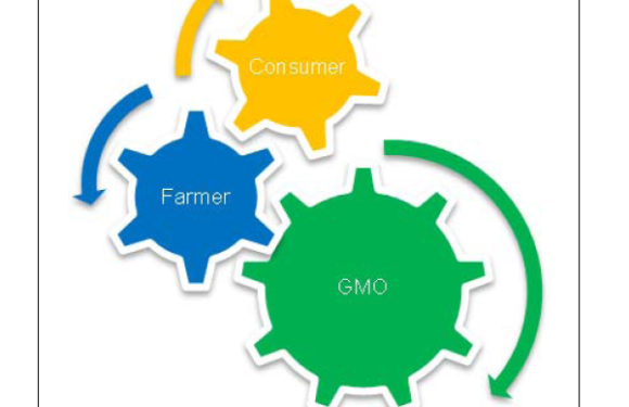 Considering Religious and Cultural Aspects of Food and Agriculture when Seeking to Introduce or Develop GMOs